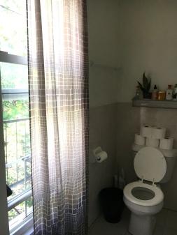 bathroombefore2